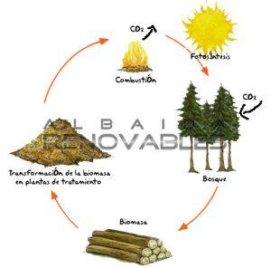 biomasa y calderas de biomasa en Albaida Renovables
